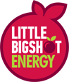 Little Big Shot Logo