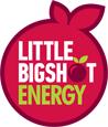 logo-lbs